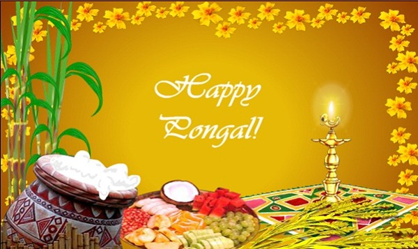 Pongal2BWallpaper2Bhd2Bpictures2BQuotes2BMessage2B1